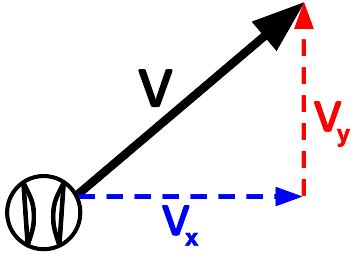 Introduction to projectile motion essay